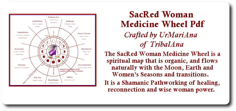 SacRed Woman Medicine Wheel Sales Graphic